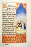 The Nativity: The Nativity