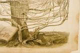 Lower Branches of the Tree with Landscape: Y Prif Gymmundebau Crefyddol, Yr Enwadau. Y Sectau &c o'r Ysgrythyr Lan