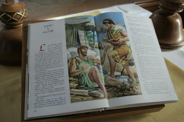 Esau and Jacob    from    Illustrations from an Illustrated Bible