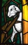 Detail of one of the sheep: Christ the Good Shepherd