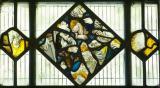 Glass Fragments